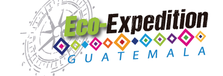 Eco Expedition